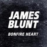 BONFIRE HEART (2013)
